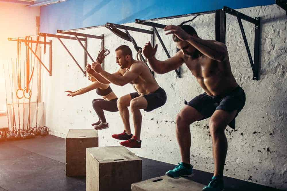 Best Exercises to Increase Vertical Jump thebodytraining