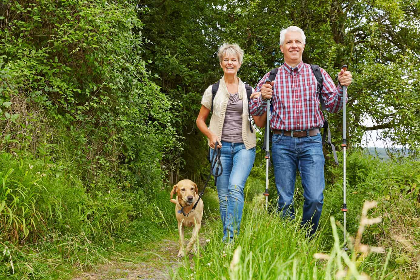 Mature couple Nordic walking with a dog
