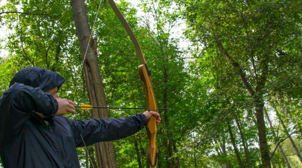 Are Recurve Bows Better Than Longbows?